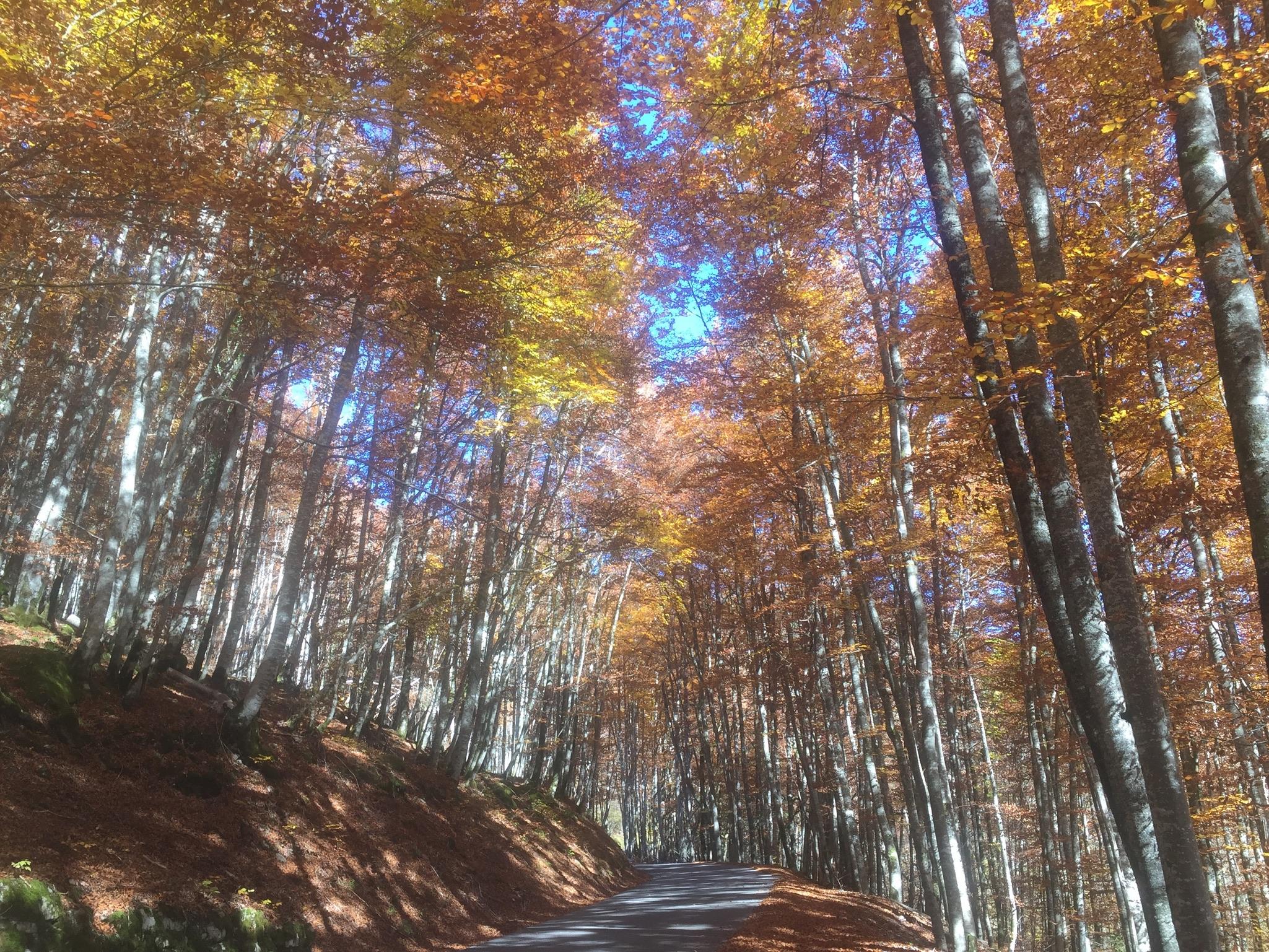 Natures Barometer in the Haute Savoie