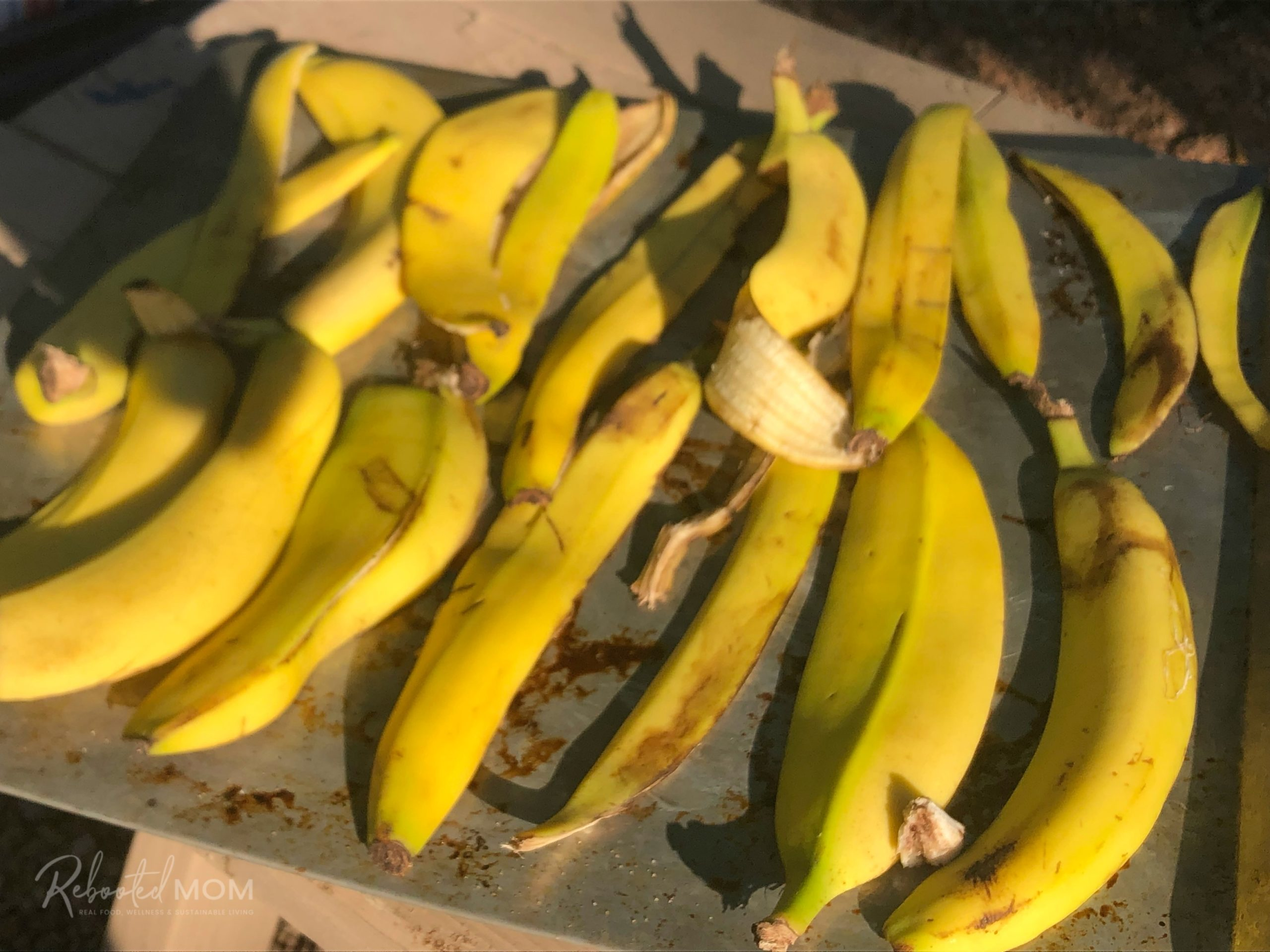Source: https://www.rebootedmom.com/banana-peel-fertilizer/
