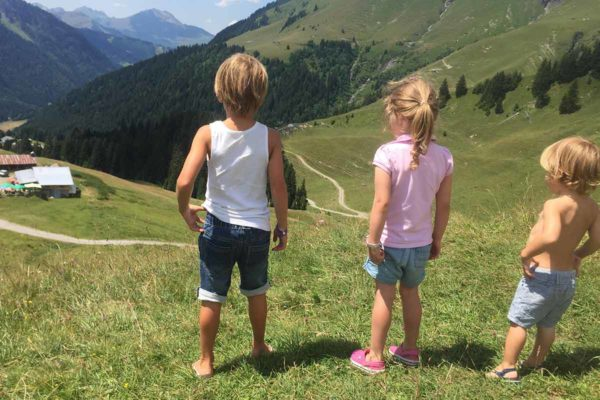 Summer chalets in the french alps - Morzine